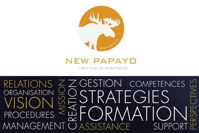 New Papayo création d'entreprise