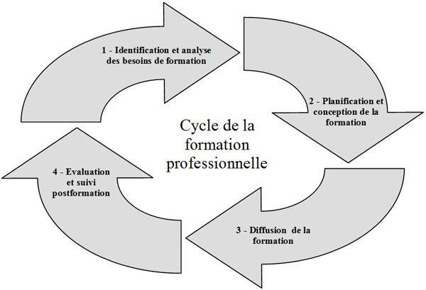 Cycle de la formation professionnelle