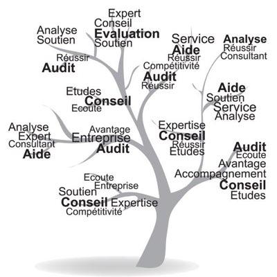 audit Conseil